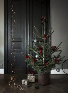 sapins et tables de Noël