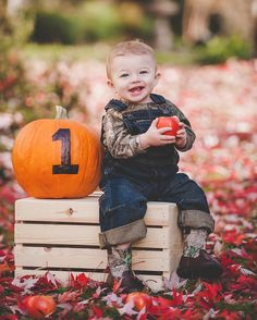 One Year Old | Fall Portrait | Baby Photos | Apple & Pumpkin | Fieldbrook Winery |  JM Photography | Humboldt County Wedding and Portrait Photographer