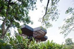 Orquidearum, Botanical Garden in Medellin -... | THE KHOOLL