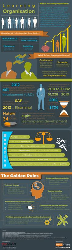 How is a Learning Organisation Differentiated Infographic | e-Learning Infographicse-Learning Infographics