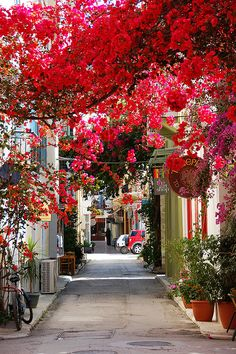 Nafplio, Peloponnese, Greece with beautiful bougainvillea Places Around The World, Oh The Places You'll Go, Places To Travel, Places To Visit, Around The Worlds, Travel Destinations, Travel Tips, Travel Hacks, Travel Photos