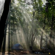 The Pinery campground. Would like to go again Small Places, Places To Visit, Community Foundation, Winter Camping, The Dunes, Airstream, Outdoor Camping, Day Trip, The Great Outdoors
