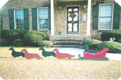 Doxie power! Who needs Rudolph anyways!  John said I cant get any more xmas decor but he might fall for this!