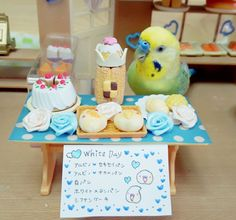 Budgie in a doll bakery <3