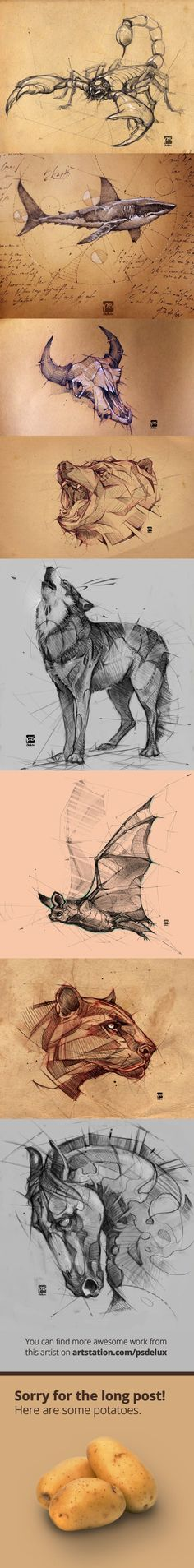 Draw Animals Check out these awesome drawings from psdelux: - More memes, funny videos and pics on Animal Sketches, Animal Drawings, Drawing Sketches, Pencil Drawings, Awesome Drawings, Art Drawings, Sketching, Drawing People, Art Inspo