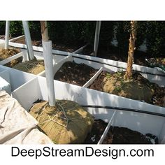 DeepStream custom welds planter liners, from simple to complex in any size, from rugged food safe polypropylene and HDPE. Have a question or want to discuss your project or challenges? Call Sheila at (305) 857-0466 between 8:30 AM and 6:00 PM for a quick quote or email her at dsdmiami@gmail.com  With thousands of installations over 16 years Sheila is a valuable source of information for home owners, developers, and Landscape Architects alike. Planter Liners, Plastic Planter, Quick Quotes, Landscape Architects, Replant, Safe Food, Planters, Commercial, Challenges