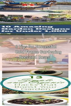 6 Tips for Successful Cold Frame Gardening ~ Bees and Roses#bees #cold #frame #gardening #roses #successful #tips Cold Frame Gardening, Gardening Tips, Indoor Gardening, Easy To Grow Houseplants, What Is Landscape, Garden Landscaping, House Plants, Planting Flowers, Bloom