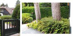 villatuin Aerdenhout - Denkers in TuinenDenkers in Tuinen | Ontwerpers van stijlvolle en tijdloze tuinen