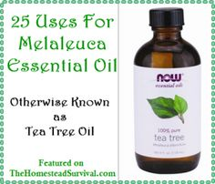 The Homestead Survival | 25 Uses For Melaleuca Essential Oil – Otherwise Known as Tea Tree Oil |Essential Oil Recipes -  http://thehomesteadsurvival.com