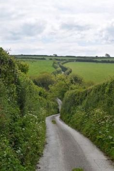 The road to Trevance, Cornwall, England. A classic British single track lane with, and sometimes without, passing places :) by deloris Cornwall England, England Uk, Country Life, Country Roads, Country Living, Places In England, Beau Site, Single Travel, England And Scotland