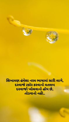 My Diary Quotes, Good Life Quotes, Life Is Good, Hell Quotes, Gujarati Quotes, Quotes Deep Feelings, Knowledge Quotes, Daily Inspiration Quotes, Wall Art Quotes