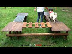 Remarkable Dog Training Tips For The Average Joe Ideas. Awesome Dog Training Tips For The Average Joe Ideas. Puppy Playground, Dog Garden, Dog School, Dog Fence, Dog Agility, Parkour, Dog Training Tips, Large Dogs, Dog Owners