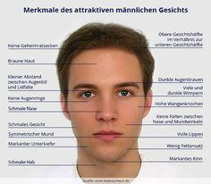 Merkmale des attraktiven männlichen Gesichts