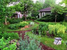 Front Yard Rain Garden and Berm Midwest Permaculture is part of Permaculture gardening - We thought it might be interesting to show how we progressed as we have been applying permaculture design principles and ideas to our property Organic Gardening, Backyard Vegetable Gardens, Plants, Front Yard Landscaping, Permaculture Gardening, Forest Garden, Rain Garden Design, Outdoor Gardens, Sustainable Agriculture