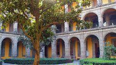 Museo Antiguo Colegio de San Ildefonso