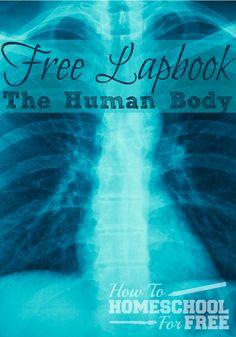 Print a FREE Human Body Lapbook here!