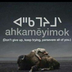 nehiyawewin:  We have a right to our language! Our language is medicine. Nêhiyawek! Speak Cree!