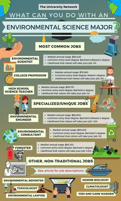12 Jobs For Environmental Science Majors A degree in environmental science can open up many job opportunities in research education law and more Oftentimes environmental. Science Notes, Science Lessons, Science Activities, Life Science, Science Art, Science Experiments, Science Chemistry, Science Notebooks, Science Worksheets