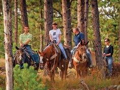 Saddle up! Horseback ride through the beautiful acres of Custer State Park in South Dakota. Yeah, I always got the short plug who wanted to go back to the stables. Custer State Park, Horse Camp, Park Resorts, Horse Stables, Trail Riding, Weekend Fun, Outdoor Recreation, South Dakota, Horseback Riding