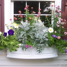 [I like the style of the window box itself. Window Box Flowers, Flower Boxes, Window Planters, Planter Boxes, Front Yard Decor, Pot Jardin, Garden Windows, Outdoor Flowers, Raised Garden Beds