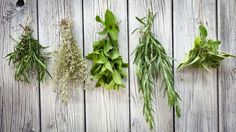 Essential Substitutes for Common Herbs