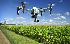 Automatización en la granja: bienvenido a la década de la agricultura robot