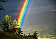 Дикая природа— это самое неизведанное, что есть наземле