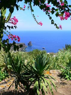 Foto Pantelleria