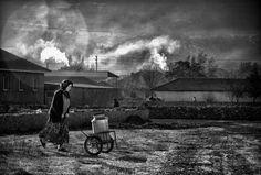 milk by Veli Aydogdu
