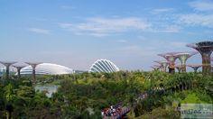 - Check more at https://www.miles-around.de/asien/singapur/gardens-by-the-bay-und-lichtshow-wonderfull/,  #Essen #GardensbytheBay #MarinaBaySands #Natur #Reisebericht #Singapur #Wonderfull