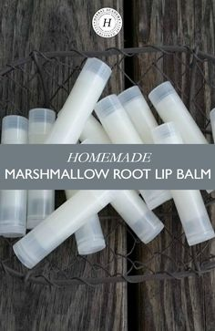 Homemade Marshmallow Root Lip Balm   Herbal Academy   Keep your lips soothed, healed, and moisturized all year long with this homemade marshmallow root lip balm that uses just a few simple ingredients!