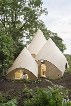 http://www.housebeautiful.com/design-inspiration/real-estate/news/a7133/japanese-forest-home/
