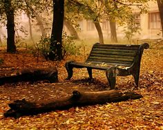 Autumn, makes me want to put on my boots and heavy sweater and go for a long walk.