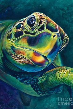 (It's more about forward progress than about speed) Tranquility Art Print by Scott Spillman. All prints are professionally printed, packaged, and shipped within 3 - 4 business days. Choose from multiple sizes and hundreds of frame and mat options. Sea Turtle Painting, Sea Turtle Art, Sea Turtles, Hawaiian Sea Turtle, Hawaiian Art, Baby Turtles, Art Et Nature, Sea Life Art, Ocean Life