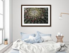 Discover «Thorns», Limited Edition Fine Art Print by Hector Mireles - From $29 - Curioos