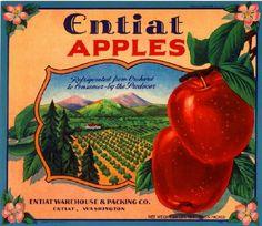 Entiat Washington State Entiat Apple Fruit Crate Label Art Print