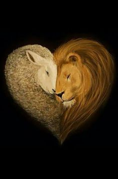 """So the lion fell in love with the lamb."" ""What a stupid lamb."" ""What a sick, masochistic lion. Lamb Tattoo, Lion And Lamb, Prophetic Art, Lion Of Judah, Christian Art, Christian Drawings, Christian Paintings, Narnia, Gods Love"