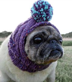 Knitted Bobble Dog Hat by TheSnugPug on Etsy Pug Christmas 56a668dcf1c