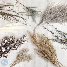 Flaylay of beautiful artificial dried stems perfect for your spring home. #artificialflowers #fakeflowers #imitationflowers #flowers #diyhomedecor #homedecor #diy #homestyle #homestyling #artificialflowerarranging #artificialflowerarrangement #flowerdecor Artificial Flower Arrangements, Artificial Flowers, Succulent Pots, Planting Succulents, Spring Home, Fake Flowers, Stems, Trees To Plant, Flower Decorations