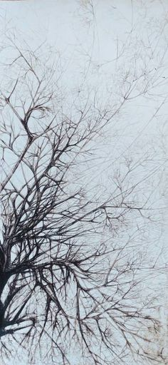 Tree - Declination XVIII