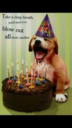 "Happy Birthday! ""Take a deep breath; you'll need it to blow out all those candles!"" ;) #old"