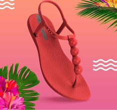 Ipanema verão 2019 Ipanema Sandals, Cute Sandals, Needle And Thread, Flip Flops, Slippers, Footwear, Shoes, Nice, Fashion