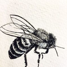 Best bee sketch by far Drawing Sketches, Art Drawings, Bee Sketch, Skull Tatto, Bee On Flower, Bee Art, Future Tattoos, Body Art Tattoos, Art Inspo