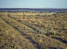 Old Bedlam ruts on the Oregon Trail above Fort Laramie Fort Laramie, Wagon Trails, Oregon Trail, American Frontier, Yellowstone National Park, Old West, Places Around The World, Wyoming, That Way