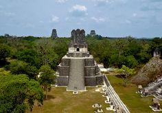 Tikal, Maya Architecture, Mexico, Park, City, Nature, Travel, Maya Civilization, Scenery