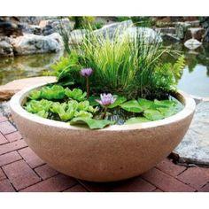 pin von monika fleischmann auf gardening pinterest wassergarten terrasse und balkon. Black Bedroom Furniture Sets. Home Design Ideas