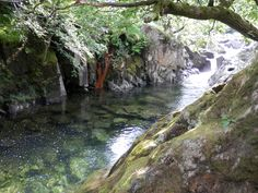 Wild Swimming in Langstrath, Lake District. Read our blog for more info: http://www.sallyscottages.co.uk/wild-swimming