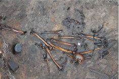 Archaeologists Just Discovered the Mangled Remains of a Slaughtered Barbarian Tribe in Denmark. One of the nearly 400 slaughtered barbarians thought to be buried at Alken Enge in Denmark. Science News Articles, European Tribes, Bog Body, Article Of The Week, Iron Age, Barbarian, Ancient History, Archaeology, Denmark