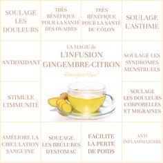 L'infusion Gingembre-Citron | INFUSION GINGEMBRE-CITRON Le Monde s'Eveille Grâce à Nous Tous ♥