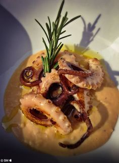Fish Dishes, Seafood Dishes, Tasty Dishes, Seafood Recipes, Gourmet Recipes, Cooking Recipes, Octopus Recipe Italian, Octopus Recipes, Finger Food Appetizers
